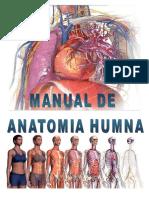 Como Se Ve La Anatomia