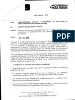 directiva miniterial.pdf