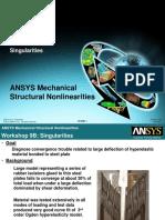 Mechanical Nonlin 13.0 WS 09B Singularities