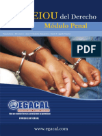 ANTIGUO PROCESO PENAL EGACAL.pdf