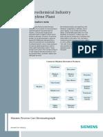 ethylene-plant-piaap-00002-0612_v4b siemens.pdf