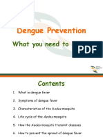 Dengue and Prevention 2.ppt
