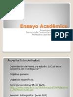 Ensayo Académico