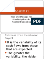 Chapter 14Risk& Managerial Options in Capital Budgeting
