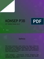 konsep-p3b