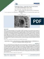 Caracterizacion Microestructural y Mecan