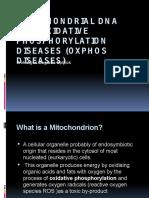 Oxidative Phosphorylation Diseases II