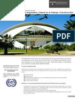 FT_SGSST.pdf