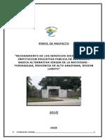 PIP CEBA - 2015 - JUNIO.docx