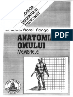 Anatomie II Ranga