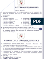 Meridianos MTC - Jing Luo