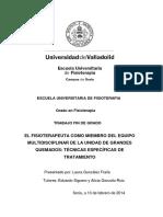 EL FISIOTERAPEUTA COMO MIEMBRO DEL EQUIPO MULTIDISCIPLINAR DE LA UNIDAD DE GRANDES QUEMADOS