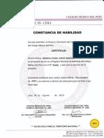 CONSTANCIA DE HABILIDAD.pdf