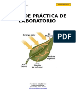 Guia de Practicas Procesos Biologicos