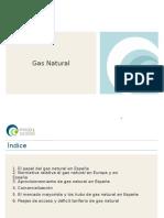 Resumen Ejecutivo Gas