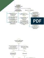 Mapa Conceptual - Libro Etxeberria II