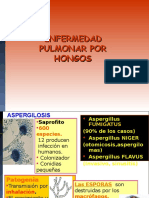 MICROBIOLOGIA Micosis