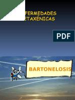 microbiologia Bartonelosis