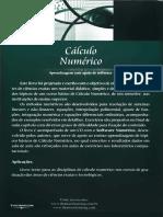Arenales S. & Darezzo a. Cálculo Numérico (2008)