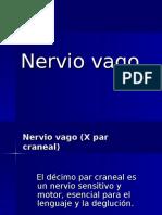 7h Vago x Par Craneal (2)