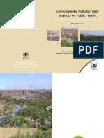DandoraWasteDump-ReportSummary.pdf