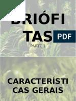 BrifitasAula1