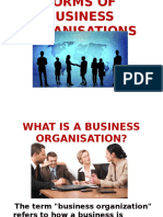 Business Organisation Ppt