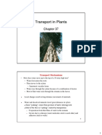 Chapt37 Transport in Plant
