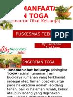 TOGA PPT.pptx