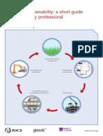RICS Report Surveying Sustainability June2007