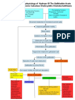 Pathophysiology of Cholecystitis
