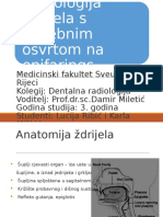 Anatomija Ždrijela 12 1 [Repaired]