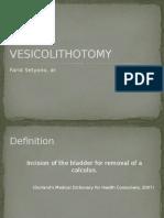 4. RID - Vesicolithotomy