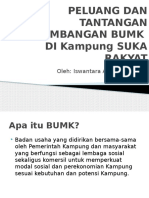 Paparan BUMK by Iswantara