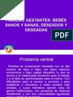 Familias Gestantes-maureen Rodriguez