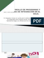 Desarrollo de Programas y Estrategias de Integración