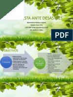 Desastres Naturales PDF