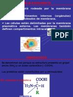 Quimica Bioinorgánica
