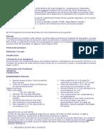Resumen Expoo de Industria de La Diatomeita
