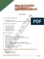 sistema de gestion de la seguridad laboral