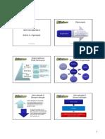 rodrigorenno-admgeral-teoriaequestoes-.pdf