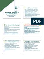 ORGANIZACIJSKA STRUKTURA novo.pdf