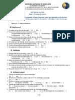Autoevaluacion Etapa1.PDF