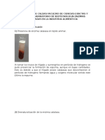 Informe catalasa