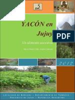 YACÓN en Jujuy Un Alimento Ancestral