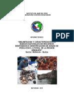 Inf-BBNN-Matarani-Sector-1_Mollendo_Quilca Bancos Naturales de Comunidades Bentónicas
