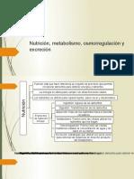Nutrición, Metabolismo, Osmorregulación y Excreción