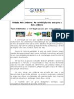 Texto Informativo Das Aves