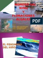 Diapositivas Seminario de Botanica 2[1]