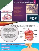 Farmacologia Del Tracto Digestivo